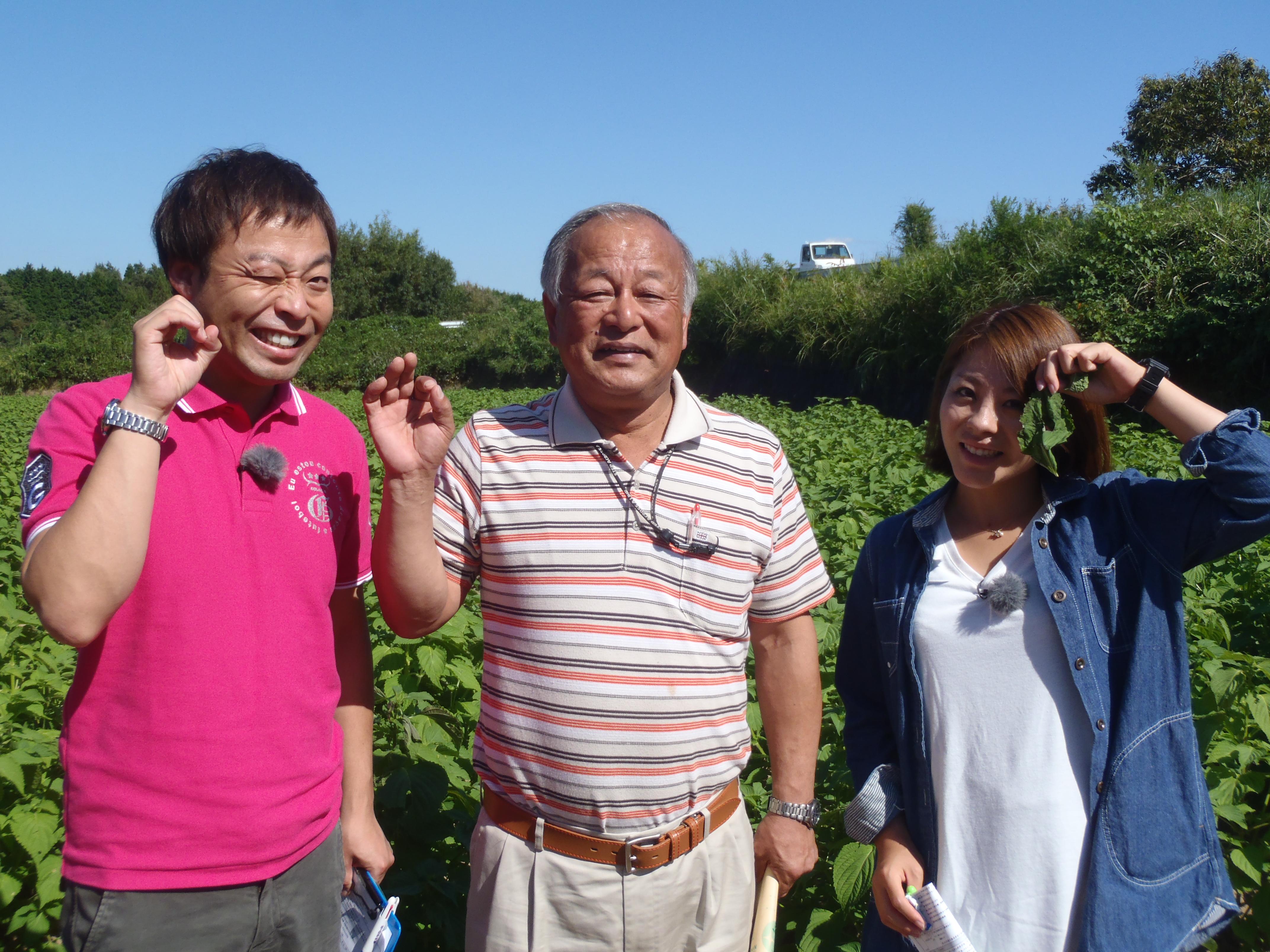 RKK開局60周年記念「くまもと まるっと見てあ~る記!」今週は山江村!!